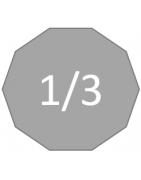 Echelle 1/3 (100cm)