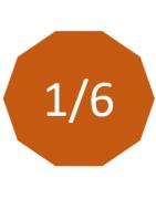 Echelle 1/6 (30cm)