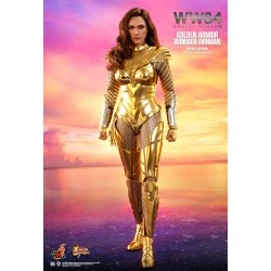 Hot Toys MMS578 Wonder...